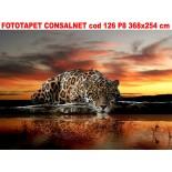 Fototapet decorativ cod 126 P8 368x254 cm
