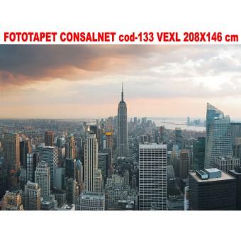 Fototapet Consalnet vlies cod- 133 VEXL  208X146 cm