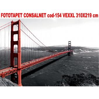 Fototapet Consalnet vlies cod- 154 VEXXL 310X219 cm
