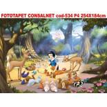 Fototapet Consalnet cod- 534 P4  254x184cm